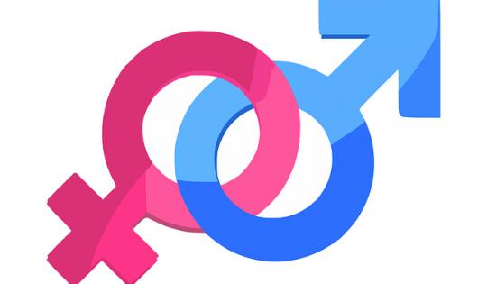 Veel voorkomende verschillen in mannelijke- en vrouwelijke- bonus-/stiefouders